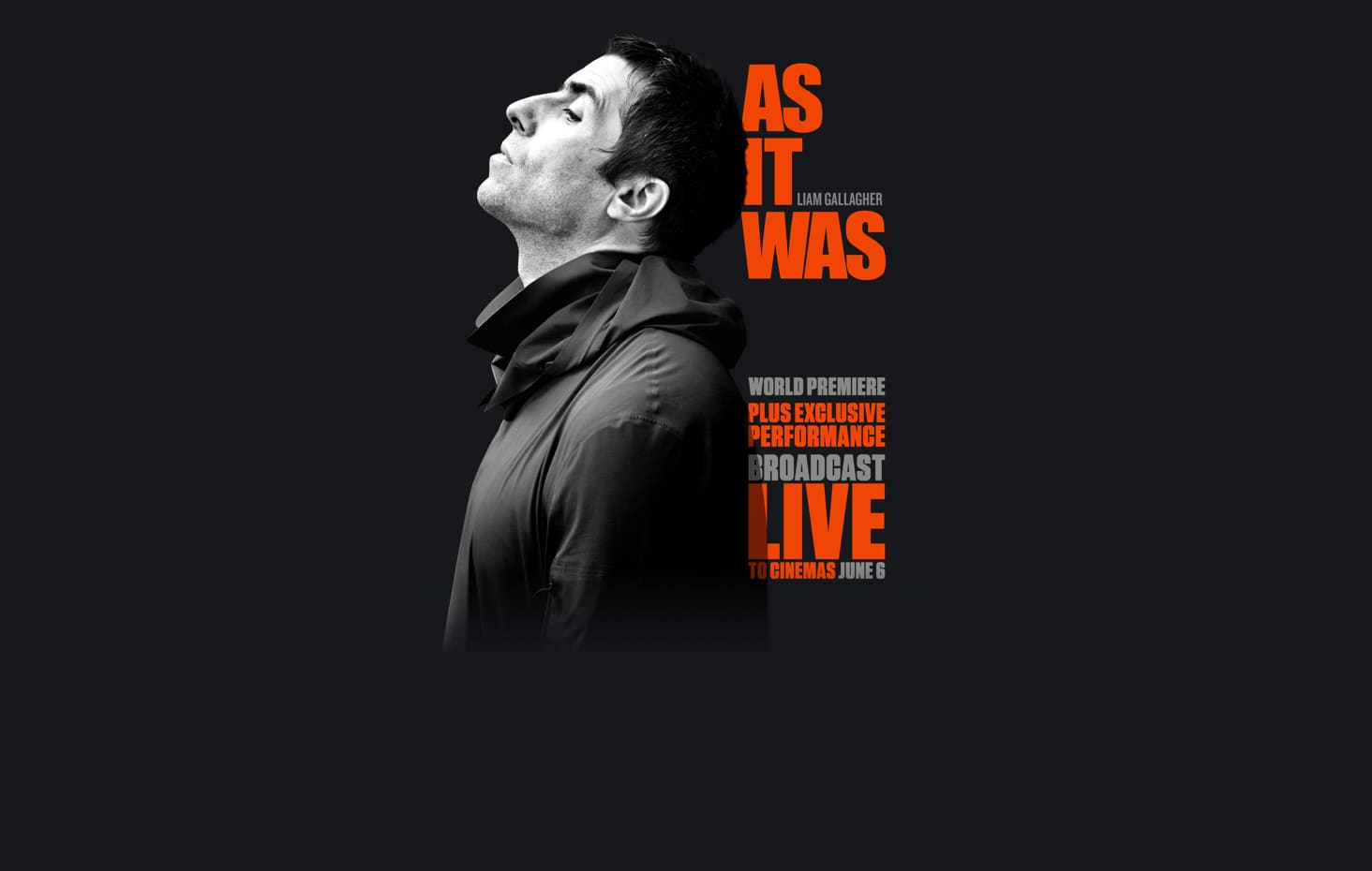 Liam Gallagher: As It Was : Synopsis | Altitude Film