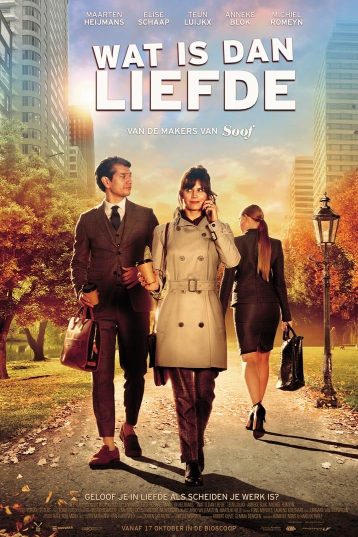 Poster image for Wat Is Dan Liefde
