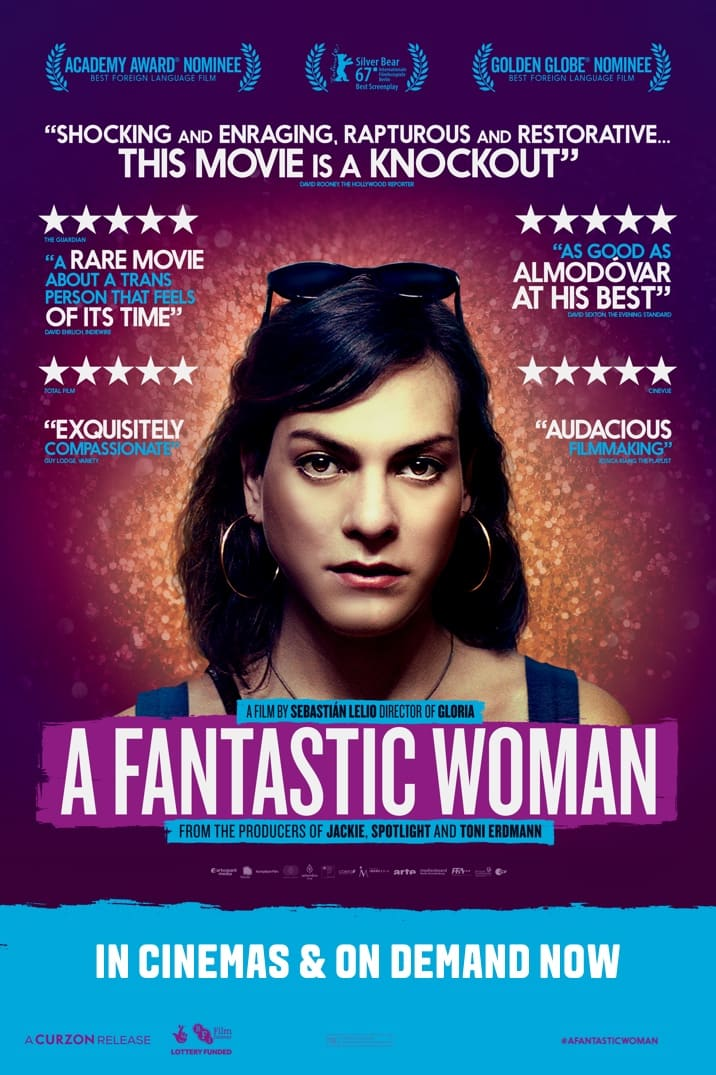 Image result for a fantastic woman poster