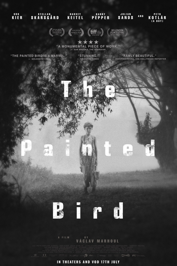 Poster image for The Painted Bird