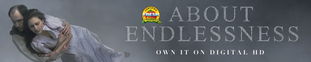 Poster image for About Endlessness
