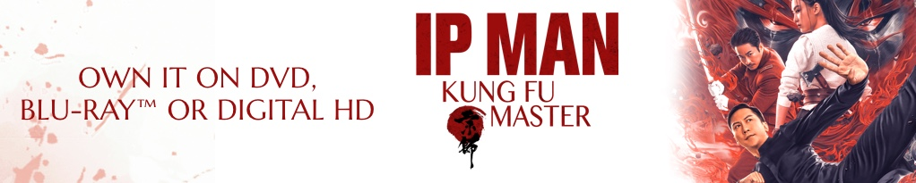 Poster image for Ip Man