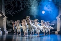 Will Bozier in Matthew Bourne's Swan Lake