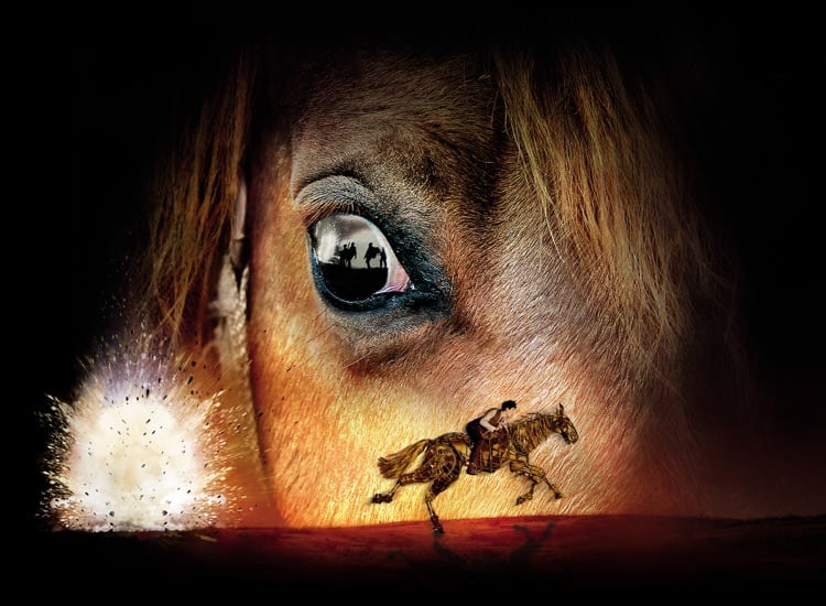 War Horse show image. A photograph of Joey's (the horse) eye.