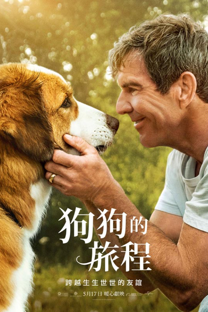 Poster for 狗狗的旅程