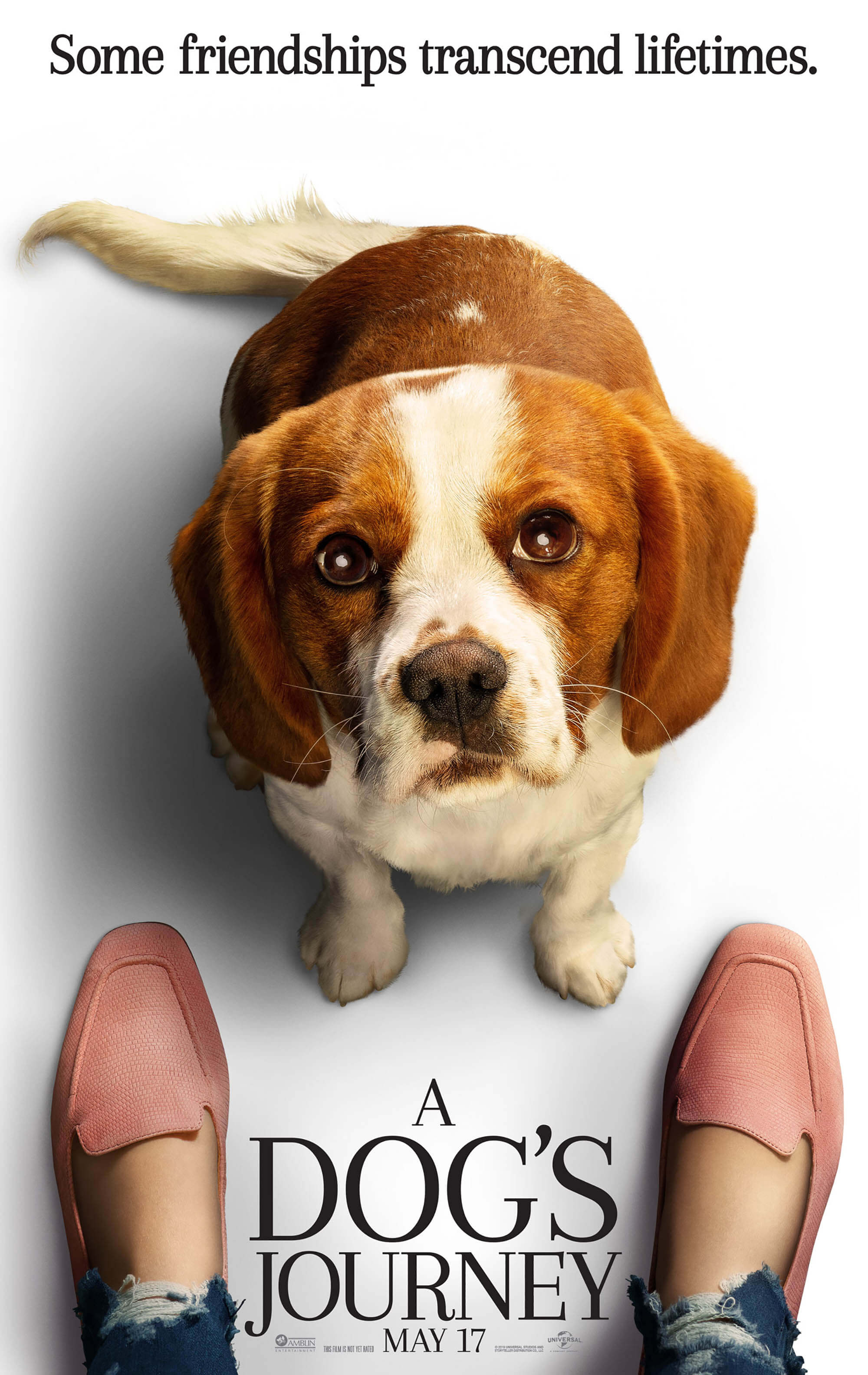 A Dogs Journey Movie Site Trailer May 17 2019