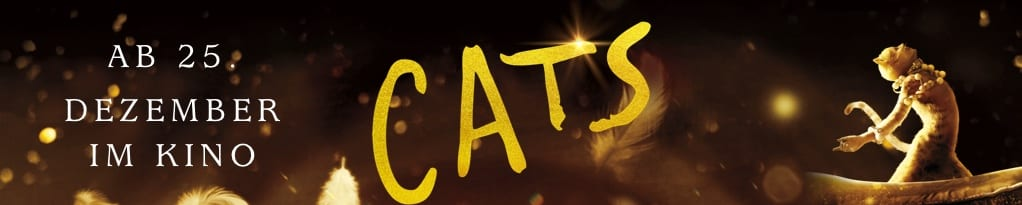 Cats Banner