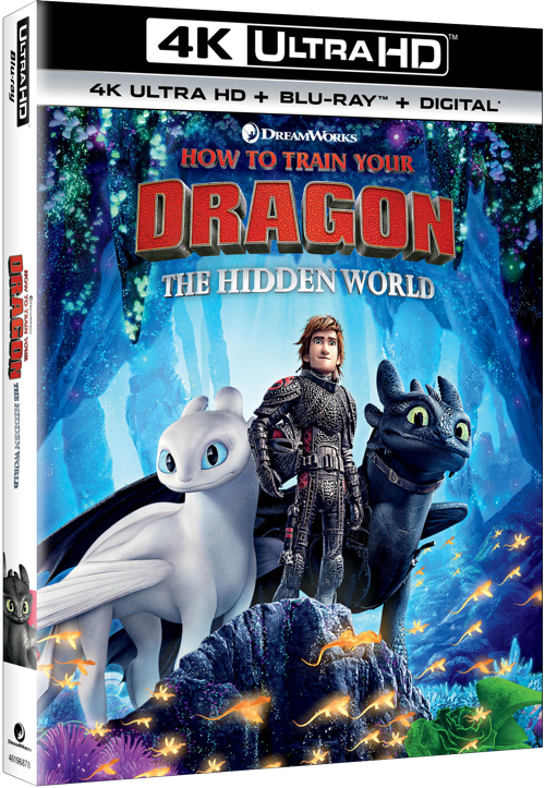 download how to train your dragon full movie in hindi hd