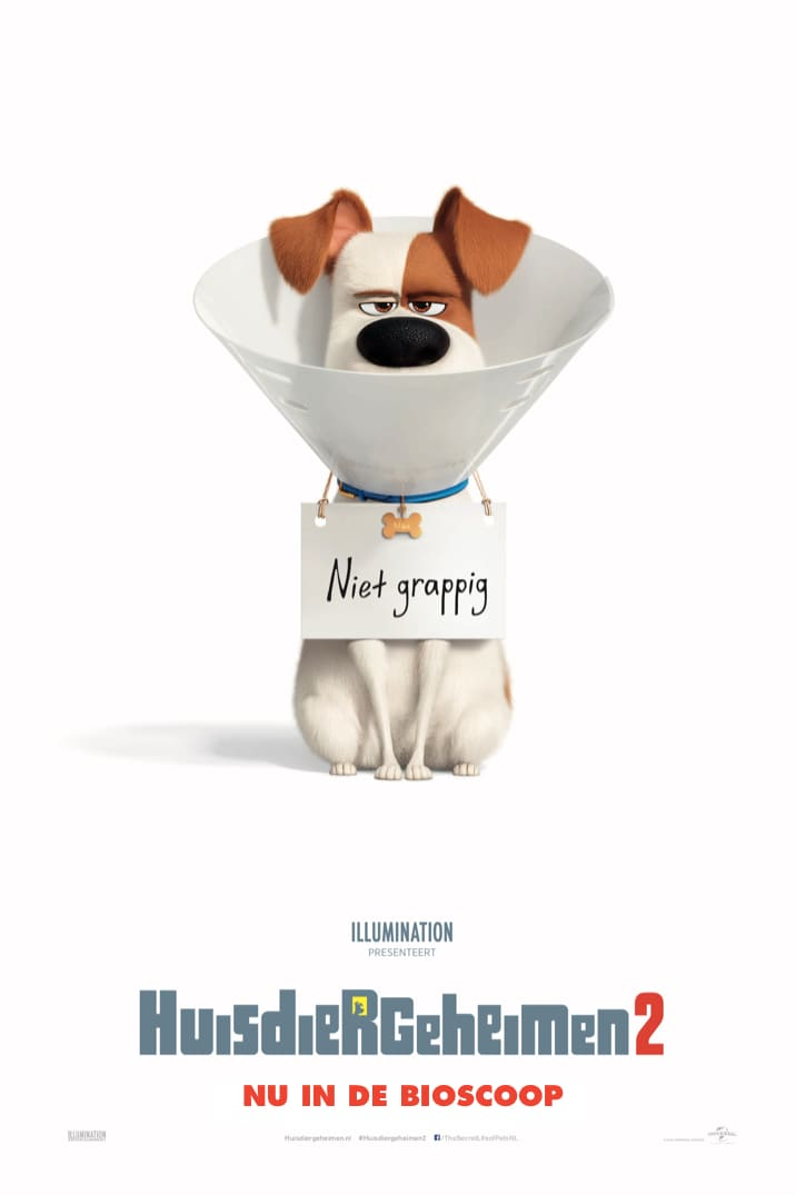 Poster for The Secret Life of Pets 2