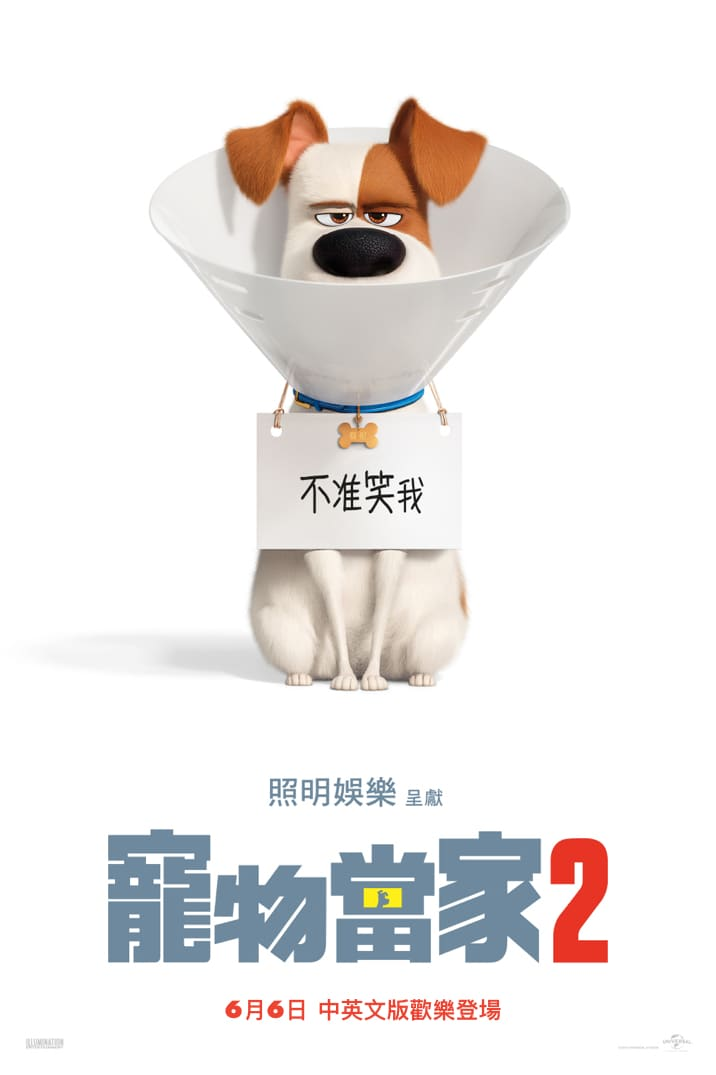 Poster for 寵物當家2