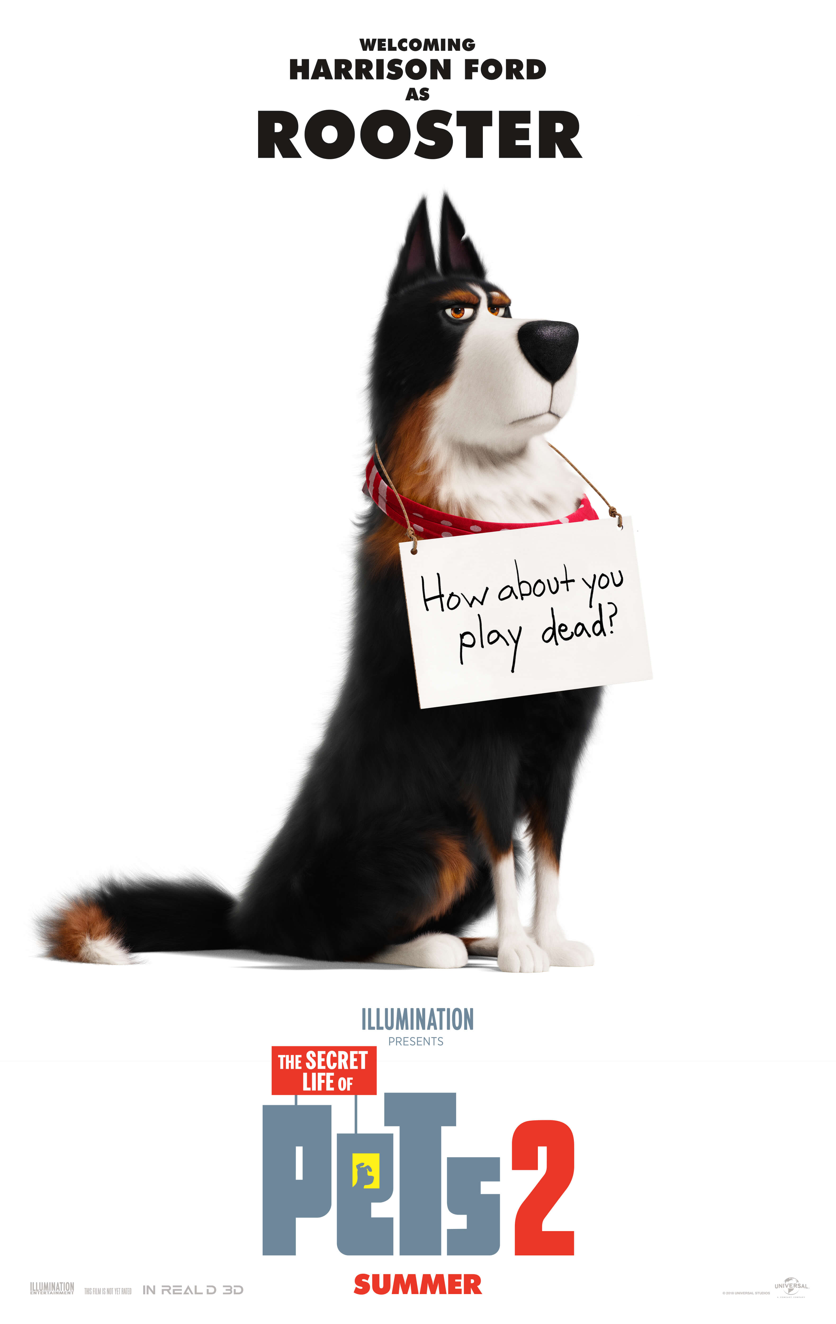 The Secret Life of Pets 2 | Pre-Order Now | Digital August 13 | 4K