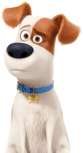 The Secret Life Of Pets 2 About The Film Own It On Digital Now 4k Ultra Hd Blu Ray Dvd Also Available On Demand