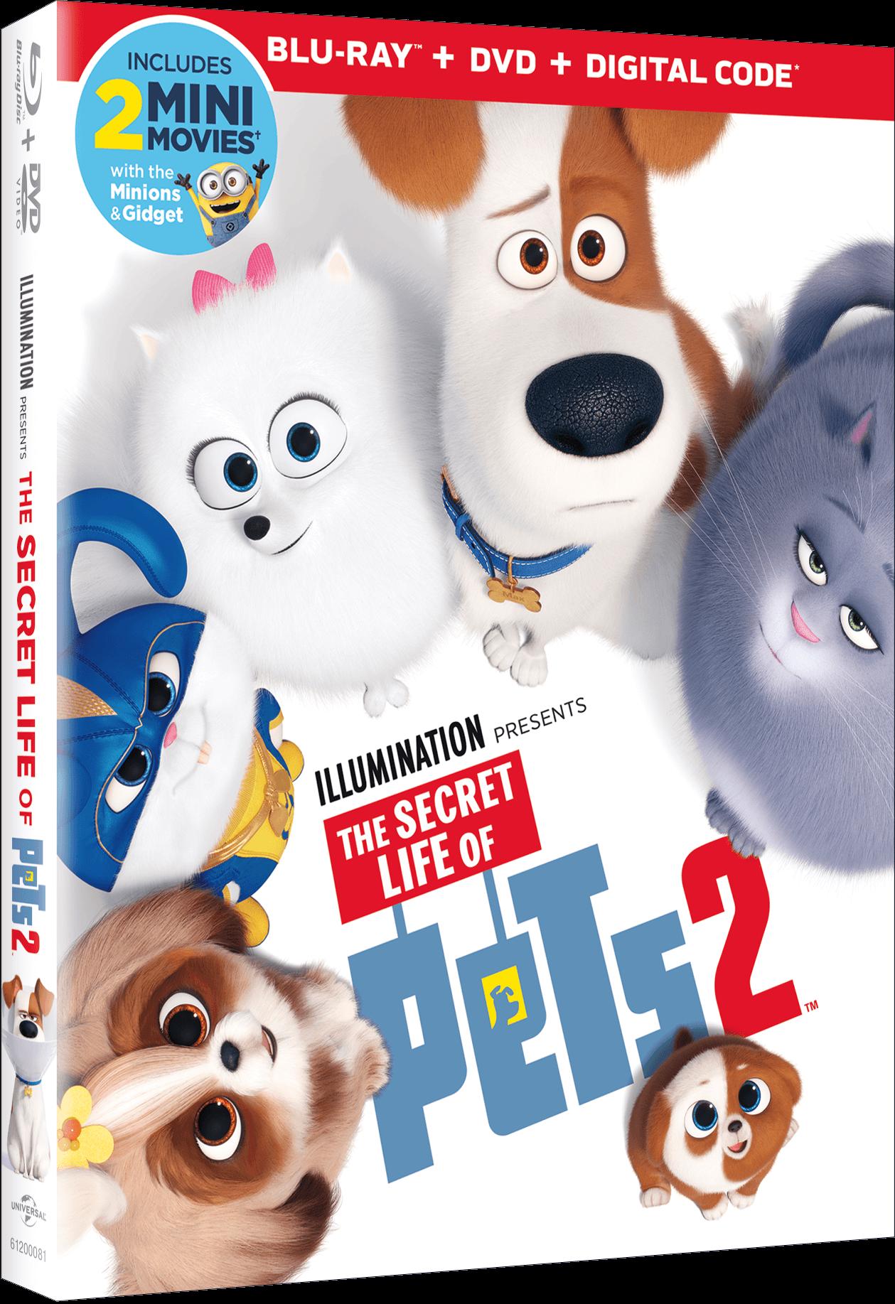 The Secret Life of Pets 2 | Own It On Digital Now | 4K Ultra HD, Blu