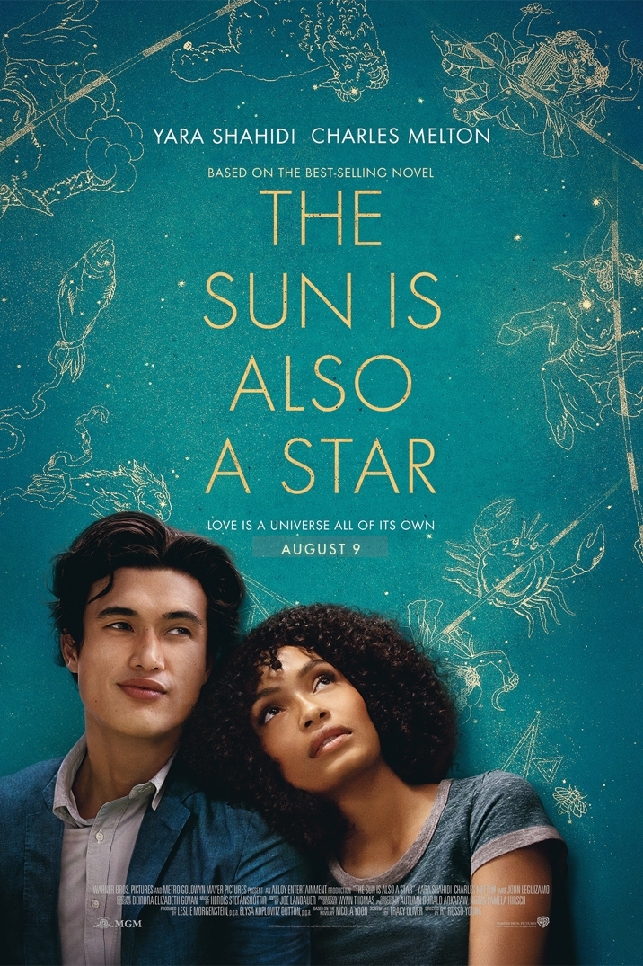 Poster for The Sun Is Also A Star